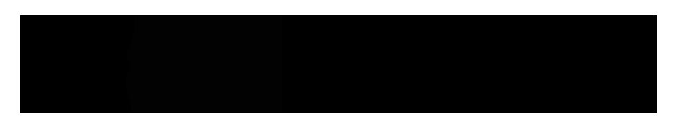 Aurender Logo Merken