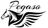 Pegaso Logo Merken